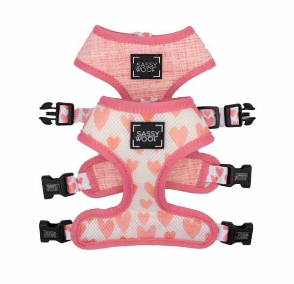 Reversible Harness Dolce Rose